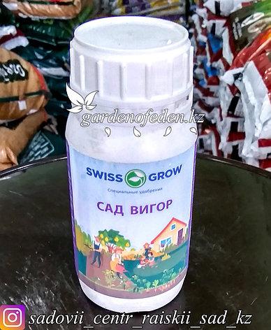 """Жидкие удобрения. Swissgrow """"Сад Вигор"""" 250мл., фото 2"""
