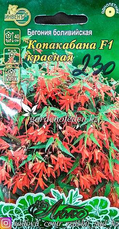 """Семена пакетированные Инвент+ Люкс. Бегония боливийская """"Копакабана F1 красная"""", фото 2"""