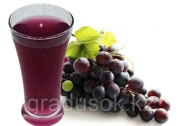 Сок концентрированный красный виноград, фото 2