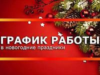 Новогодние праздники 2019!