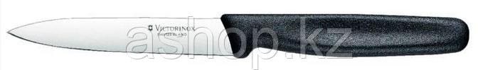 Нож кухонный Victorinox Paring Knife Pointed, Общая длина: 210 мм, Длина клинка: 100 мм, Материал клинка: Нерж