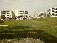 Покупка недвижимости в Египте, фото 1
