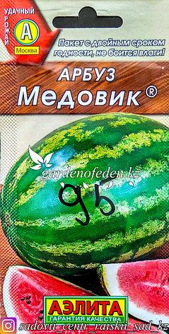 """Семена пакетированные Аэлита. Арбуз """"Медовик"""", фото 2"""