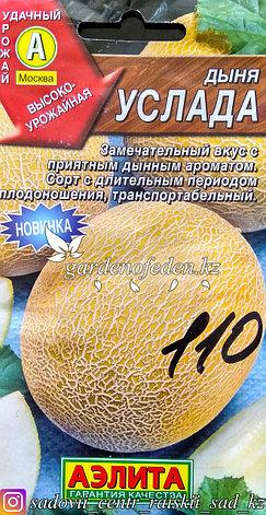 """Семена пакетированные Аэлита. Дыня """"Услада"""", фото 2"""