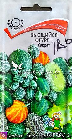 """Семена пакетированные Поиск. Вьющийся Огурец """"Секрет"""", фото 2"""