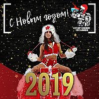 С Новым 2019 годом!!! 🎄🎉