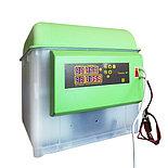 Инкубатор Спектр, автоматический, 84 шт яиц, датчик и регул. влажности, Россия., фото 2