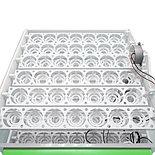 Инкубатор Спектр, автоматический, 84 шт яиц, датчик и регул. влажности, Россия., фото 4
