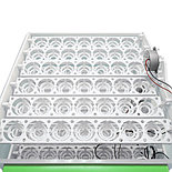 Инкубатор Спектр, на 84 яиц (220/12В цифр. терм. с изм. влаж.) автопереворот, Россия., фото 3