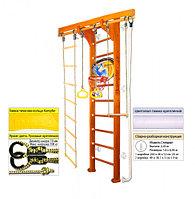 Домашний спортивный комплекс Kampfer Wooden Ladder Wall Basketball Shield 2.43, №3 классический