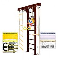 Домашний спортивный комплекс Kampfer Wooden Ladder Wall Basketball Shield 2.43, №5 шоколадный