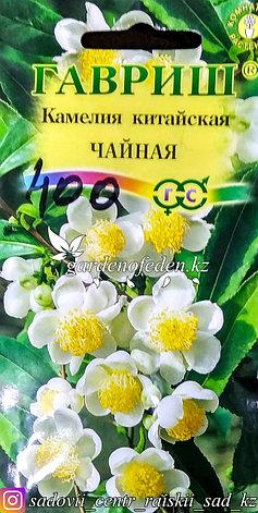 """Семена пакетированные Гавриш. Камелия китайская """"Чайная"""", фото 2"""