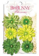 Набор цветов - Daisy Clover Bo Bunny
