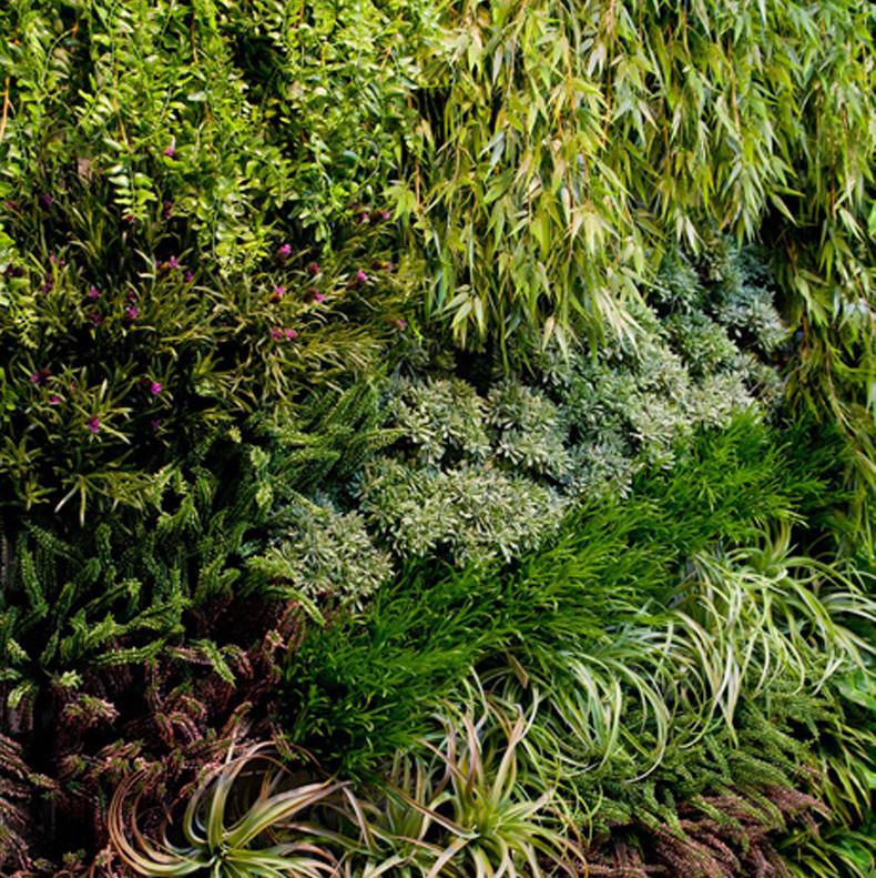 Фитостена из искусственных растений