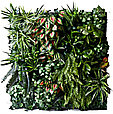 Фитостена из искусственных растений, фото 6