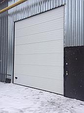 Секционные ворота для автомойки, фото 3