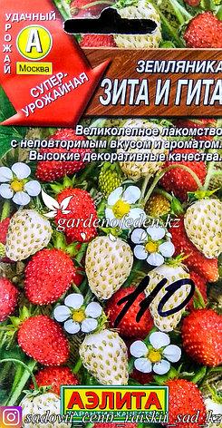 "Семена пакетированные Аэлита. Земляника ""Зита и Гита"", фото 2"