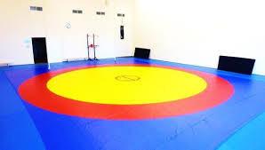 Борцовский ковер трехцветный 12 х 12 м с покрышкой, толщина 4 см НПЭ