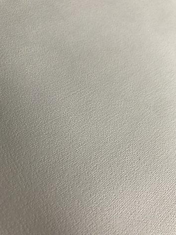 Обои (изморозь) для сольвентной печати 1,07, фото 2