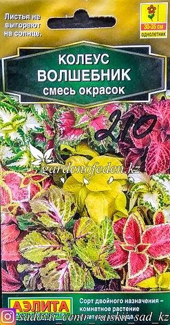 """Семена пакетированные Аэлита. Колеус Волшебник """"Смесь окрасок"""", фото 2"""