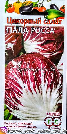 """Семена пакетированные Гавриш. Цикорный салат """"Пала Росса"""", фото 2"""