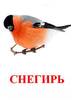 "Карточки Г. Домана ""Птицы"""