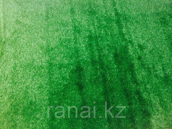 Искусственный газон в алматы