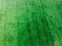 Зеленый газон для фотосессии
