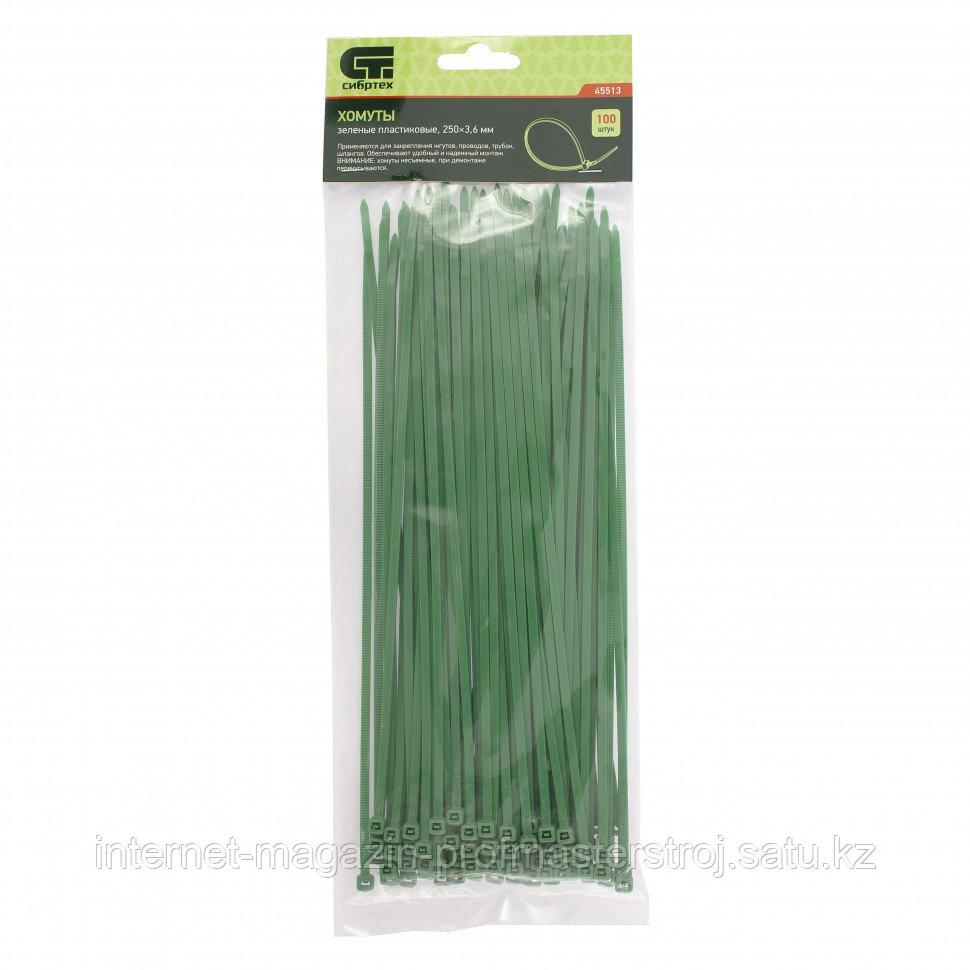 Хомуты, 250 x 3,6 мм, пластиковые, зеленые, 100 шт. Сибртех