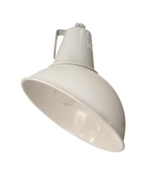 Светильник НСП 17-100-106 (наклонный)