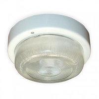 Светильник НПП 03-60-003 Селена-3 IP 65