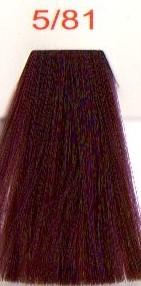 Краска для волос Easy СВЕТЛЫЙ КАШТАНОВЫЙ ФИОЛЕТОВЫЙ