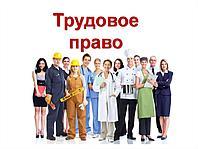 Курс трудового законодательства для кадровиков и юристов 2021