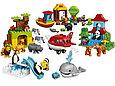 10805 Lego Duplo Вокруг света: В мире животных, Лего Дупло, фото 3