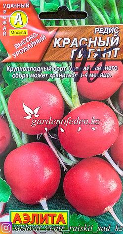 """Семена пакетированные Аэлита. Редис """"Красный гигант"""", фото 2"""