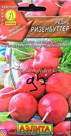 """Семена пакетированные Аэлита. Редис """"Ризенбуттер"""", фото 2"""