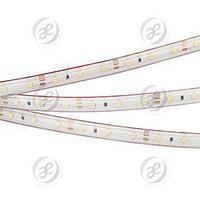 Лента RTW 2-5000P 12V White6000 (3528, 300 LED, LUX)