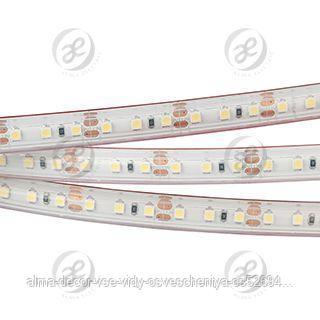 Лента RTW 2-5000PS 12V White6000 2x (3528, 600 LED, LUX)
