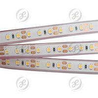 Лента RTW 2-5000PGS 12V Cool 2x (3528, 600 LED, LUX)
