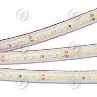 Лента RTW 2-5000PS-50m 24V White6000 2x (2835, 160 LED/m, LUX)