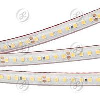 Лента RTW 2-5000PS 24V White6000 2x (2835, 160 LED/m, LUX)