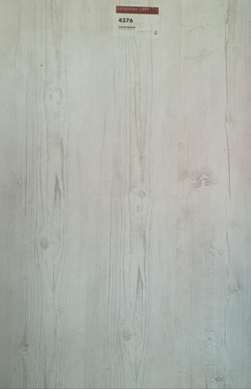 Ламинат EUROHOME, LOFT,  Сосна Гризли 32 класс 8 мм