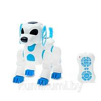 Робот-собака радиоуправляемый «Лакки»