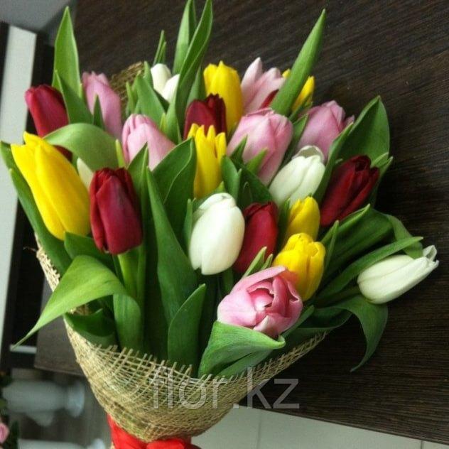 Тюльпаны оптом к 8 марта - фото 1