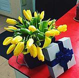 Тюльпаны оптом к 8 марта, фото 5