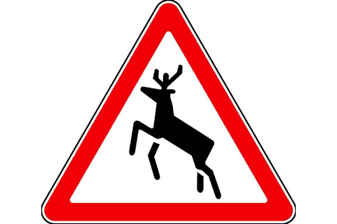 Знак 1.25 Дикие животные