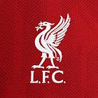 Форма (Liverpool) - оригинал сезон 18/19, фото 3