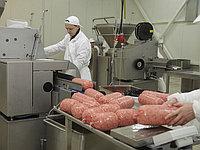 Минизавод для переработки мяса (Колбасный цех) на 600 кг/смену