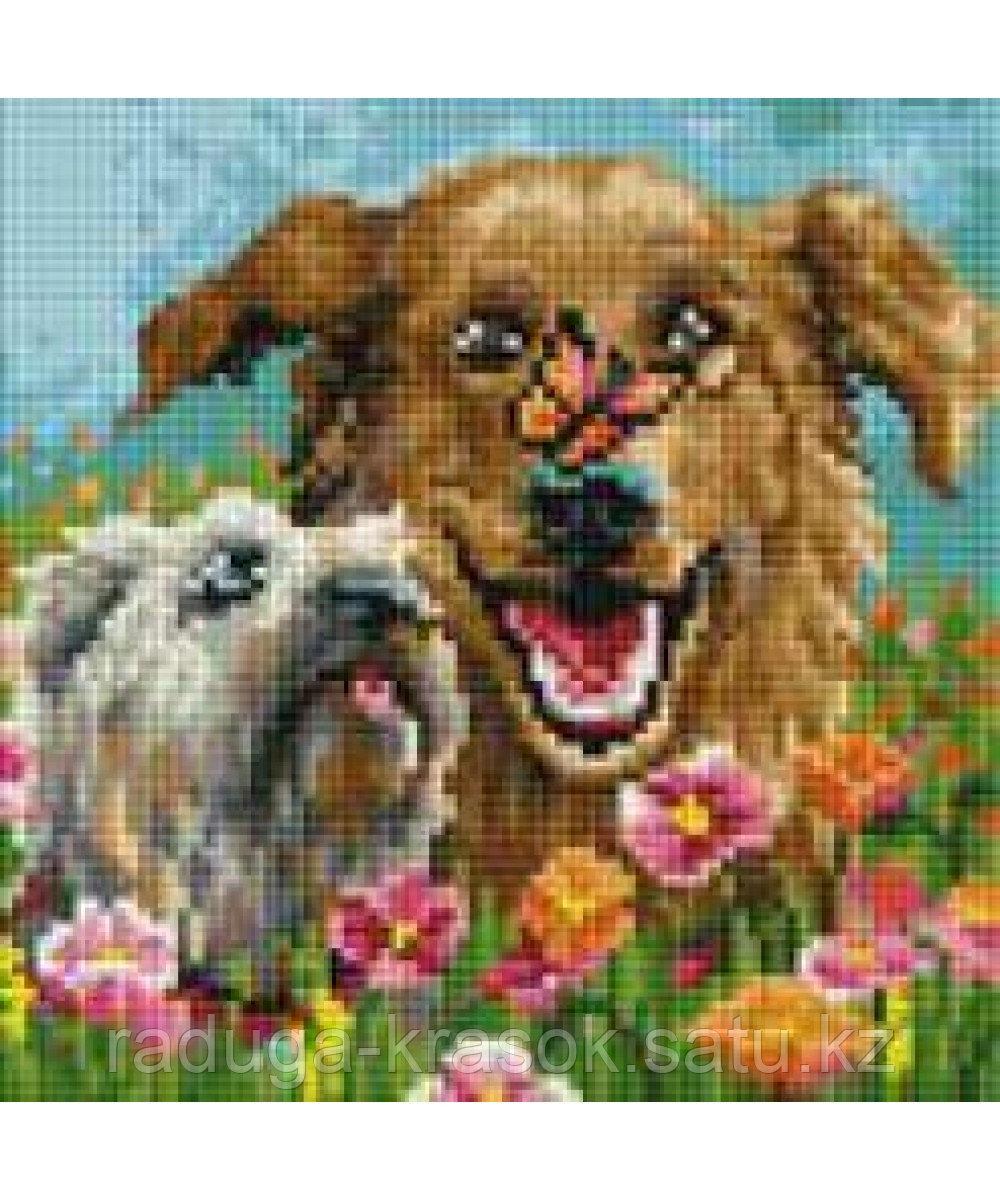 "Картины стразами на подрамнике ""Собачки"" 20х20см"