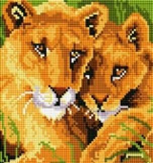 """Картины стразами на подрамнике """"Лев со львицей"""" 20х20см"""